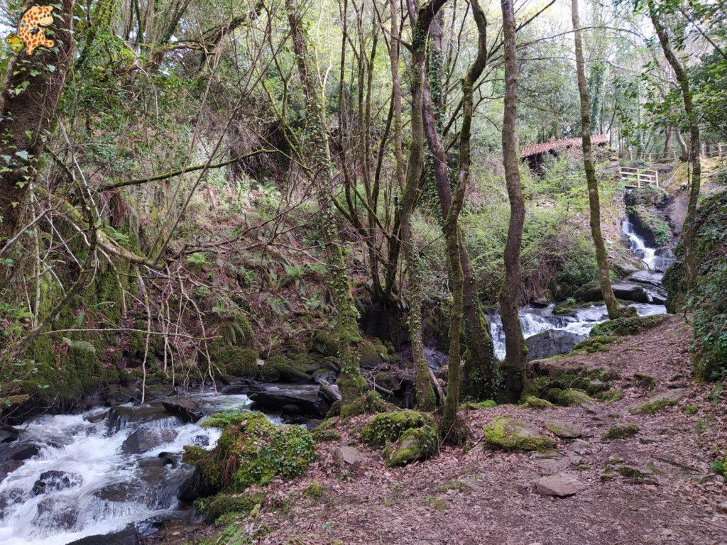 vilasantar ruta dos muinos 12 1024x768 - Senderismo en Vilasantar: Ruta dos muíños do río das Gándaras
