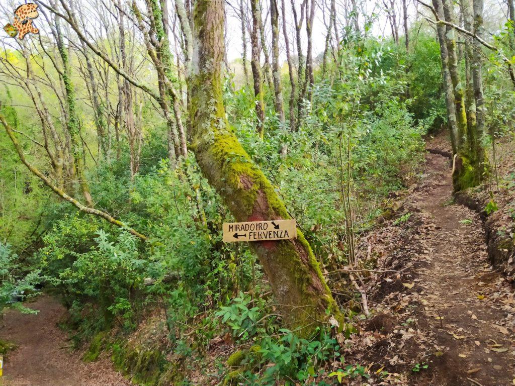 vilasantar ruta dos muinos 14 1024x768 - Senderismo en Vilasantar: Ruta dos muíños do río das Gándaras
