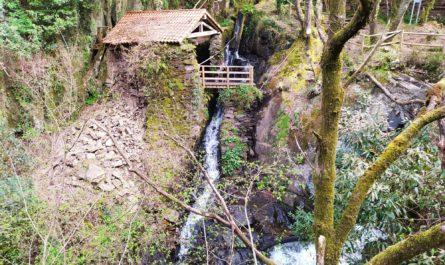 vilasantar ruta dos muinos 16 445x265 - Ruta dos muíños de Vilasantar