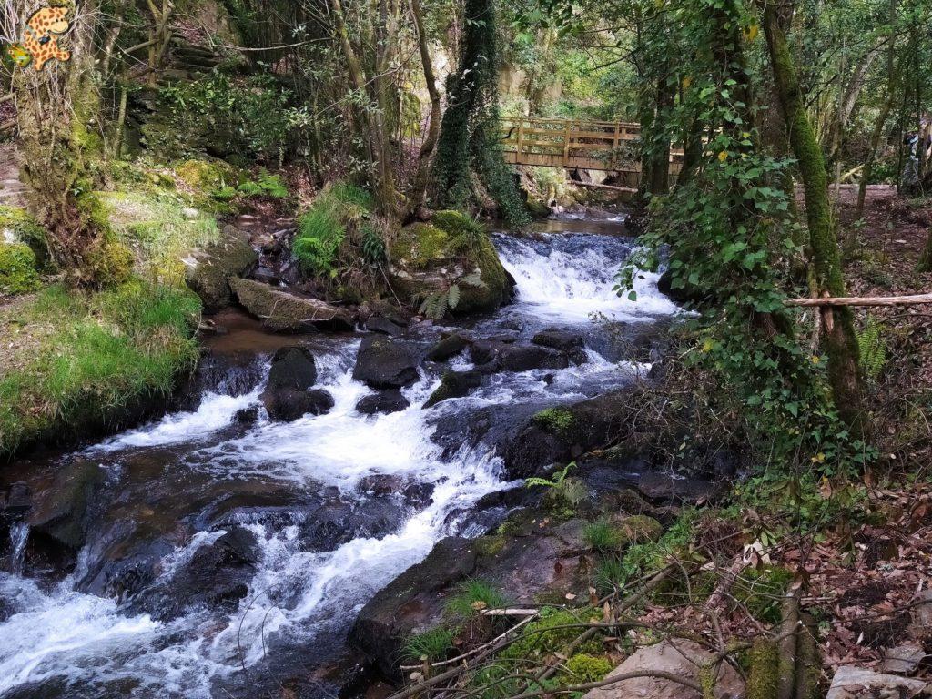 vilasantar ruta dos muinos 19 1024x768 - Senderismo en Vilasantar: Ruta dos muíños do río das Gándaras
