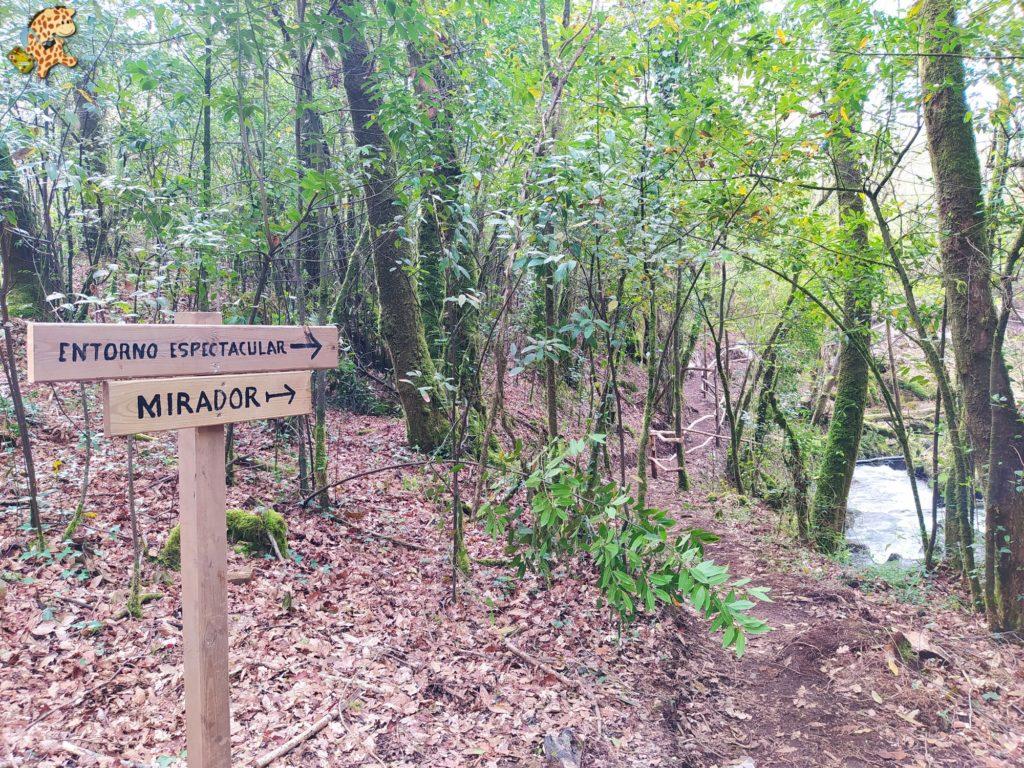 vilasantar ruta dos muinos 20 1024x768 - Senderismo en Vilasantar: Ruta dos muíños do río das Gándaras