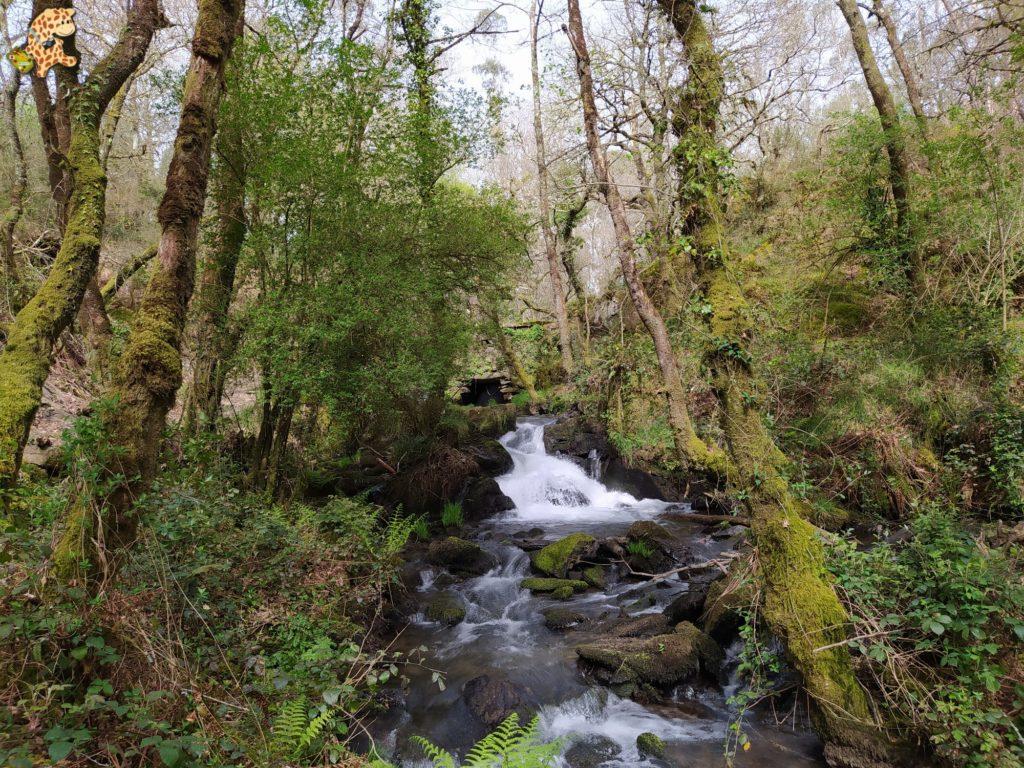 vilasantar ruta dos muinos 49 1024x768 - Senderismo en Vilasantar: Ruta dos muíños do río das Gándaras