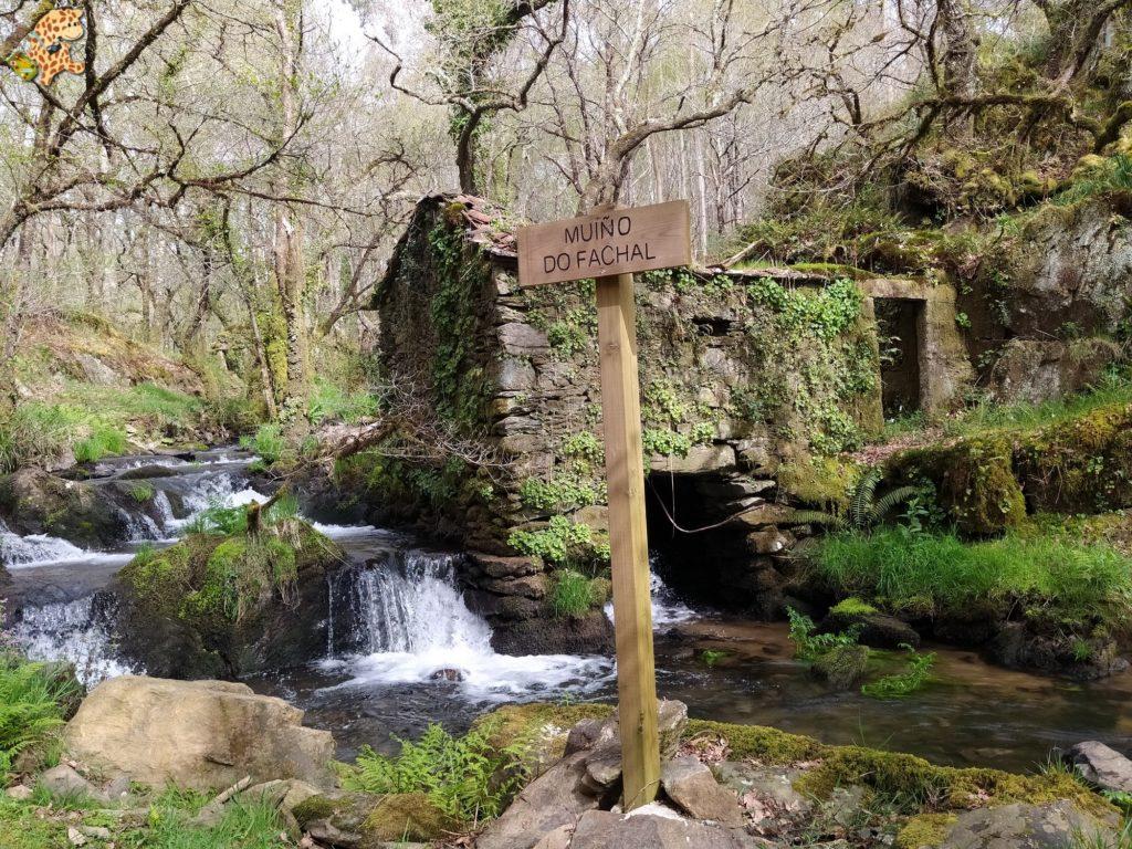vilasantar ruta dos muinos 50 1024x768 - Senderismo en Vilasantar: Ruta dos muíños do río das Gándaras