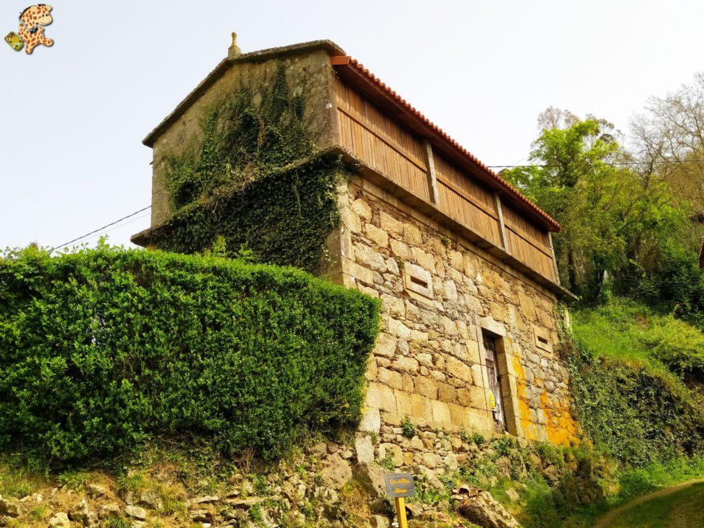 vilasantar ruta dos muinos 61 1024x768 - Senderismo en Vilasantar: Ruta dos muíños do río das Gándaras