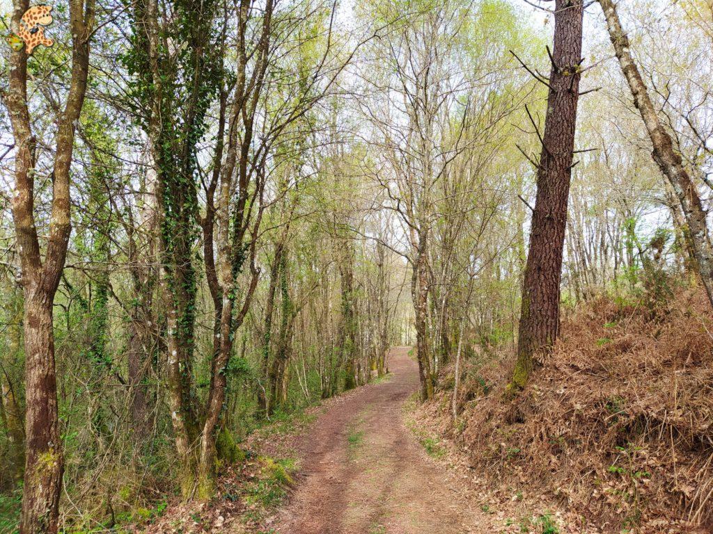 vilasantar ruta dos muinos 8 1024x768 - Senderismo en Vilasantar: Ruta dos muíños do río das Gándaras